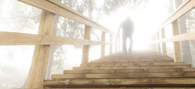 stairs, steps, progress